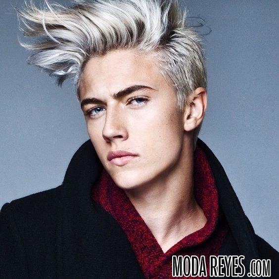 cabello hombre gris con cresta